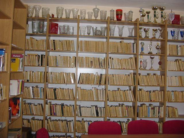 OBRÁZEK : knihovna_2008.jpg